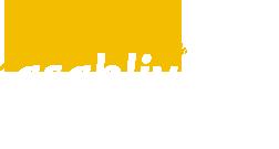 Сайт управления специального образования Министерства образования Республики Беларусь asablive.by
